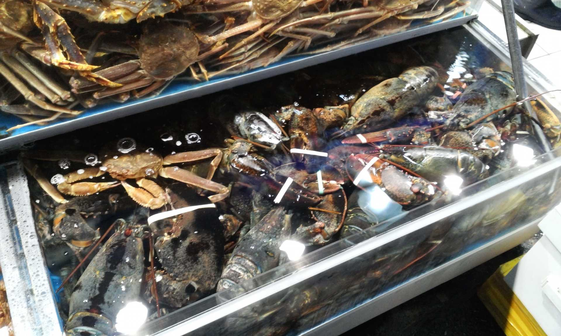 Variety of Crab and Lobster