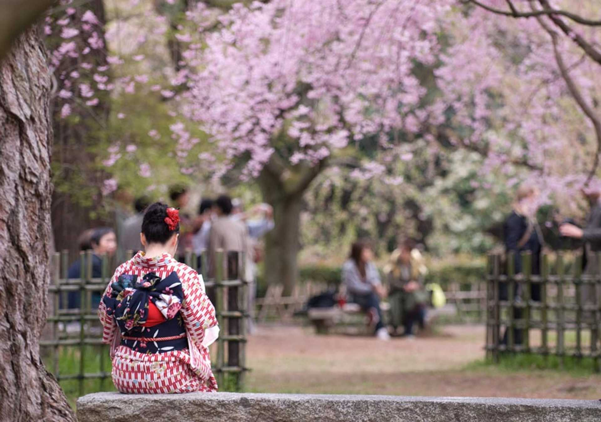 Kyoto-Imperial-Palace-Park---1