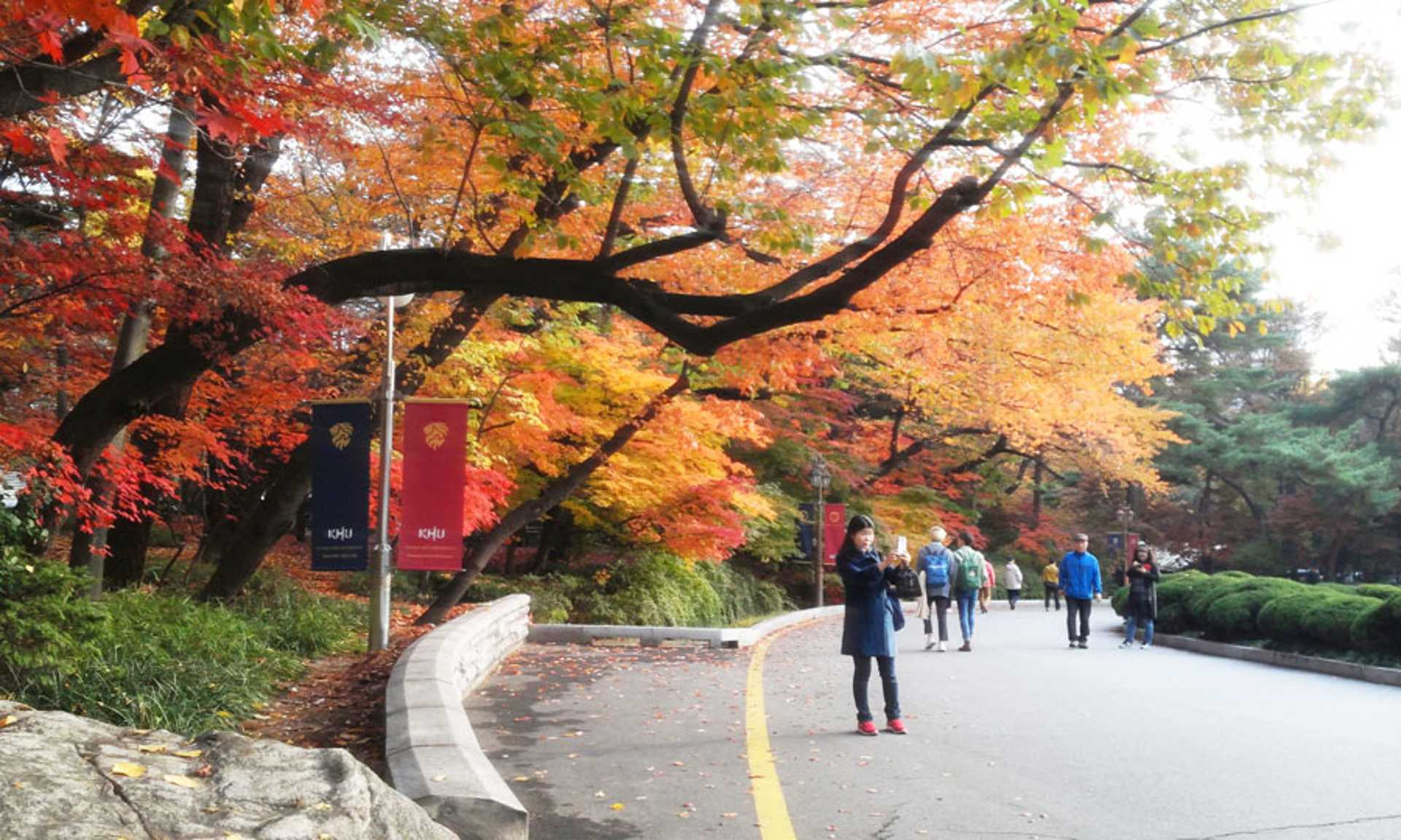 Autumn in KHU has its own charm!