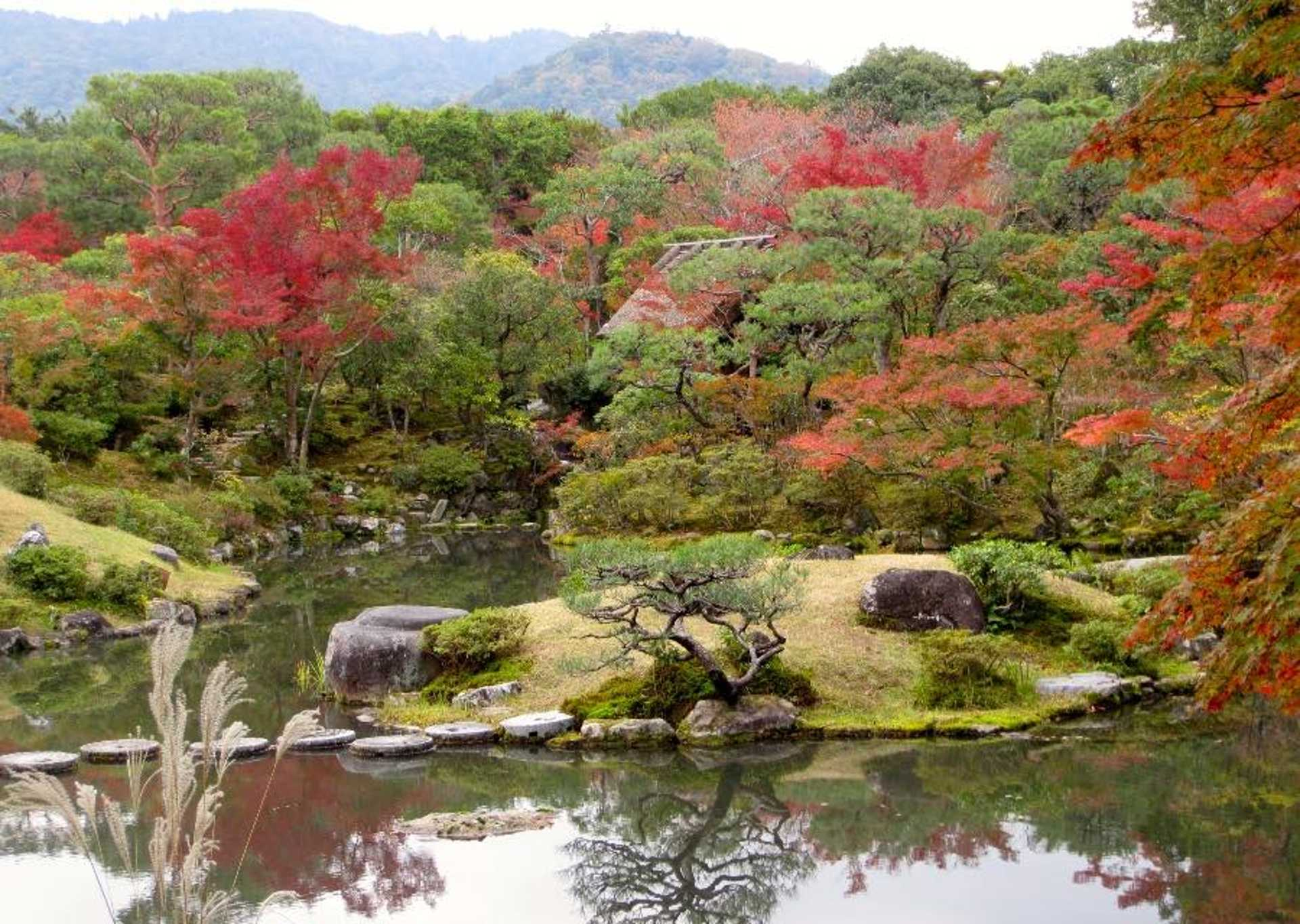 11 - Get lost in the temple gardens of Nara and Kamakura