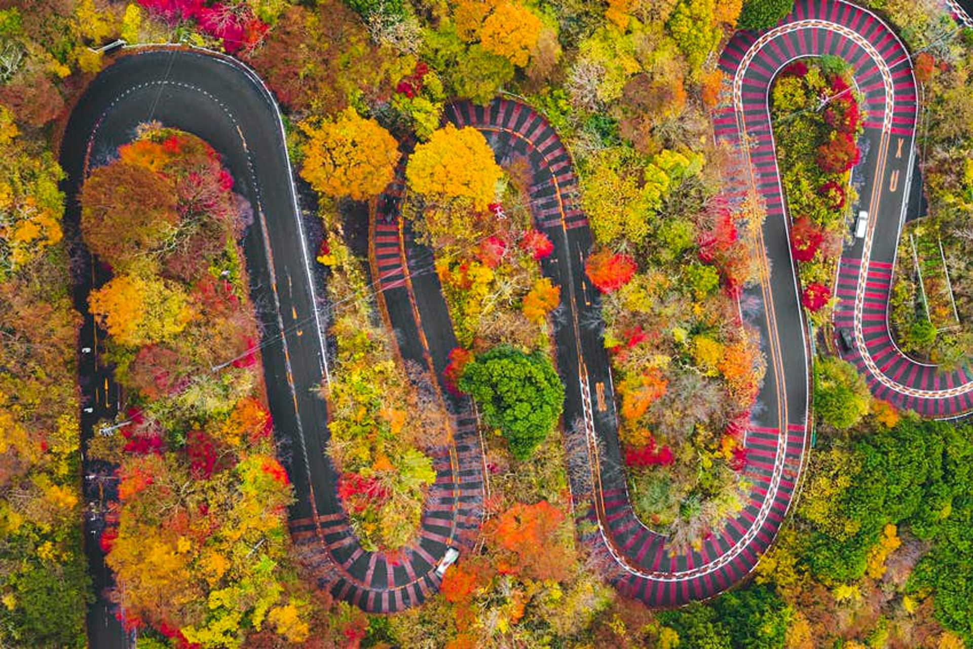 Aerial view of the curves of a scenic mountain road in Fuji-Hakone Izu National Park in autumn, Japan.